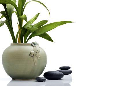 Pot de céramique élégant avec bambou leafs et pierres Banque d'images