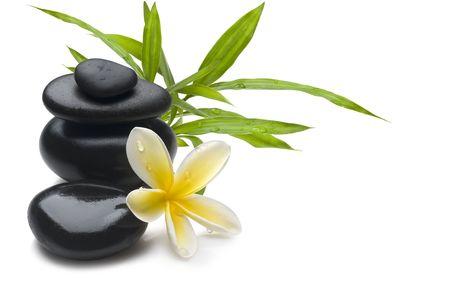 yeşillik: Spa still life background, with flower, bamboo and massage stones
