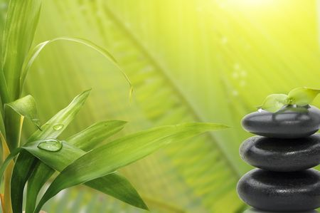 Spa still life , with bamboo leafs and massage stones Stock Photo