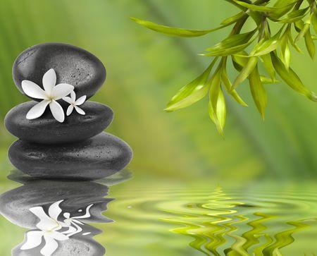 Spa still life, avec des fleurs blanches sur des pierres noires et feuilles de bambou dans l'eau