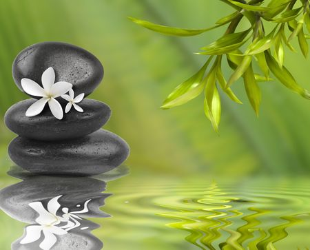 Spa still life, with white flowers on black stones and bamboo leafs in the water photo