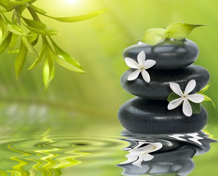 Spa still life, with white flowers on the black stones and bamboo leafs Фото со стока
