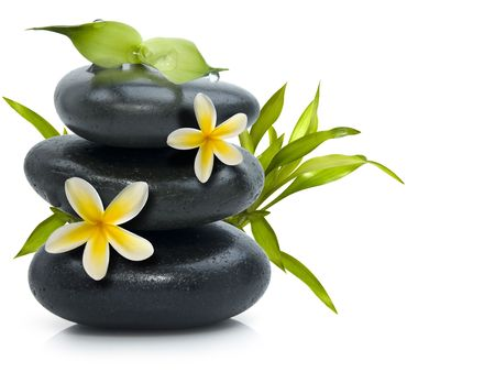 piedras zen: Spa Bodeg�n con flores amarillas