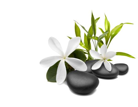 Spa Stilleven met witte bloemen Stockfoto
