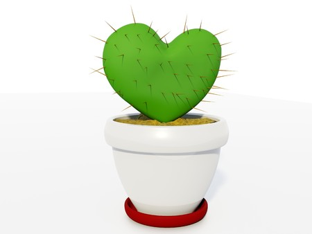 Green cactus as heart isolated on white Stock Photo - 4100160
