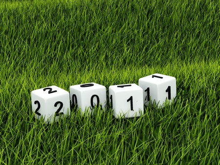 New year toys over green grass