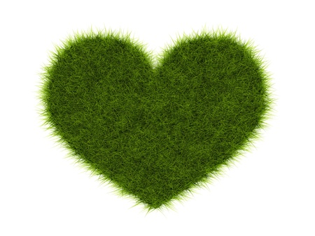 Heart from grass isolated on white photo