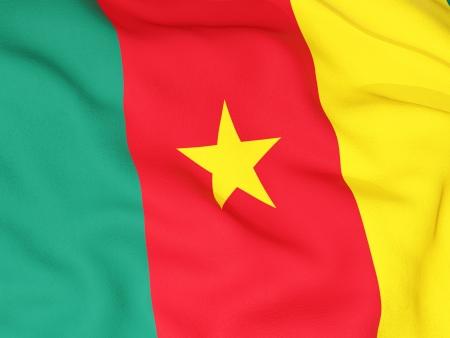 cameroon: Bandiera del Camerun