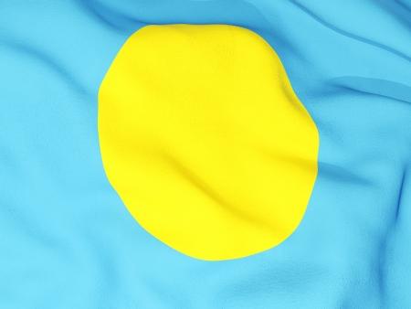 Flag of palau photo