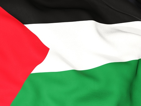 palestinian: Flag of palestinian territory