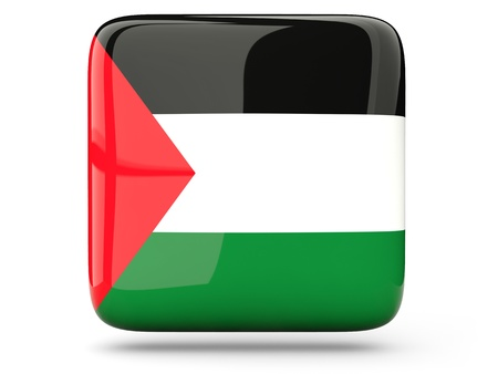 palestinian: Glossy square icon of flag of palestinian territory