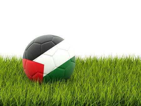 palestinian: Football with flag of palestinian territory on green grass