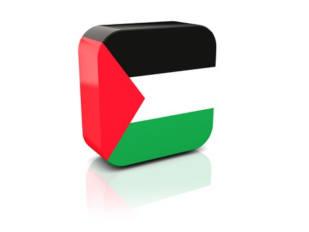 palestinian: Square icon with flag of palestinian territory with reflection