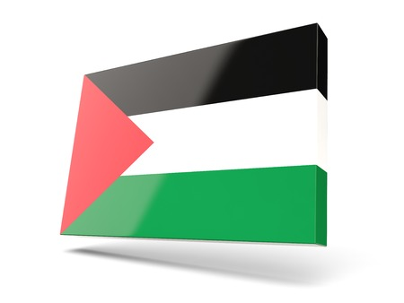 palestinian: Square icon with flag of palestinian territory isolated on white