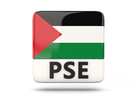 palestinian: Square icon with flag of palestinian territory and ISO code