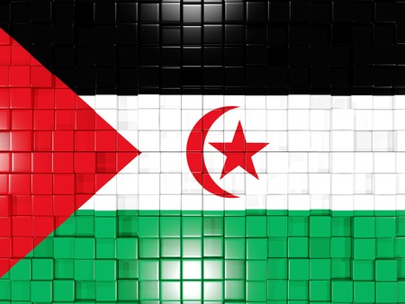 sahara: Mosaic background with square parts. Flag of western sahara. 3D illustration