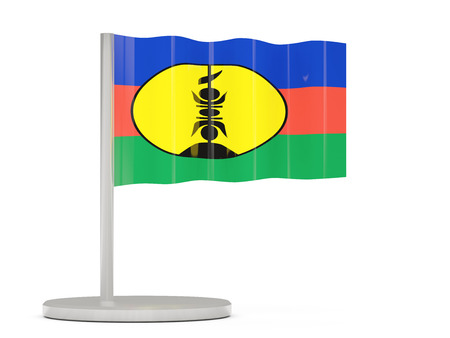 new caledonia: Pin with flag of new caledonia. 3D illustration