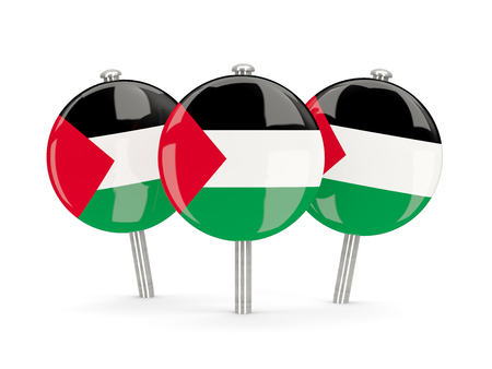 palestinian: Flag of palestinian territory, round pins on white. 3D illustration
