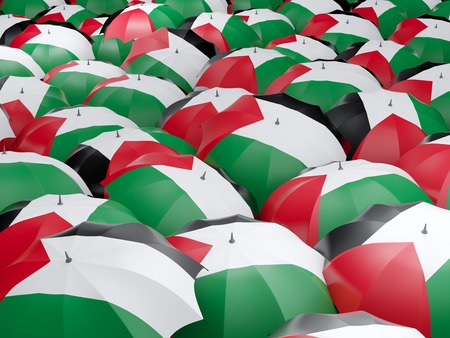 palestinian: Flag of palestinian territory on umbrella. 3D illustration