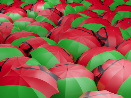Flag of malawi on umbrella. 3D illustration