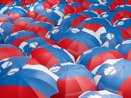 Flag of slovenia on umbrella. 3D illustration