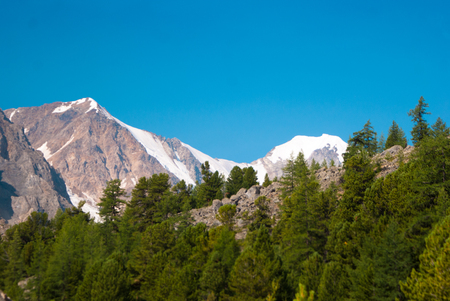 altay: At the foothills of Aktru glacier, Altay mountaind Stock Photo