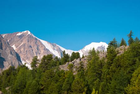 aktru: At the foothills of Aktru glacier, Altay mountaind Stock Photo