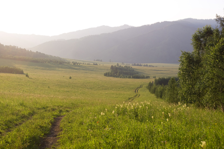 altay: Countryside road in the valley. Altay mountains.