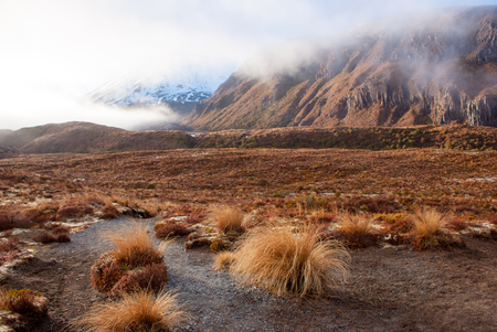 At footspets of volcano in tongariro national park, New Zealand