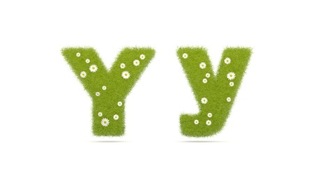 Natural green grass with camolines font. Letters Y y. 3D illustration Stock Photo