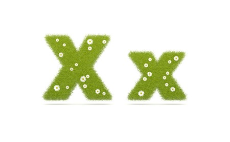 Natural green grass with camolines font. Letters  X x. 3D illustration Stock Photo