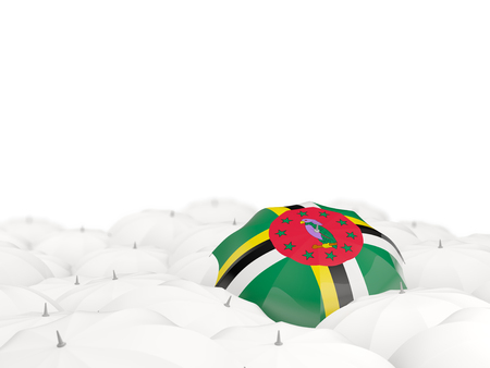 Umbrella with flag of dominica isolated on white. 3D illustration