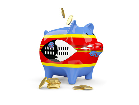 Fat piggy bank with fag of swaziland and money isolated on white. 3D illustration