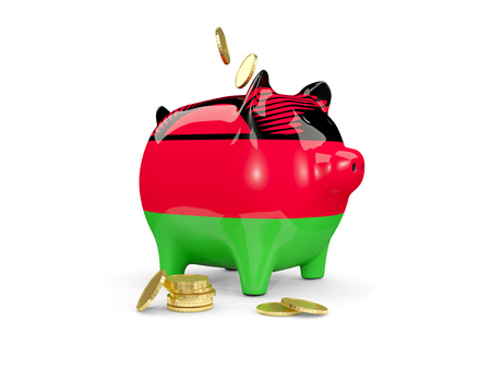 Fat piggy bank with fag of malawi and money isolated on white. 3D illustration
