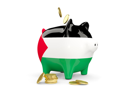 Fat piggy bank with fag of palestinian territory and money isolated on white. 3D illustration