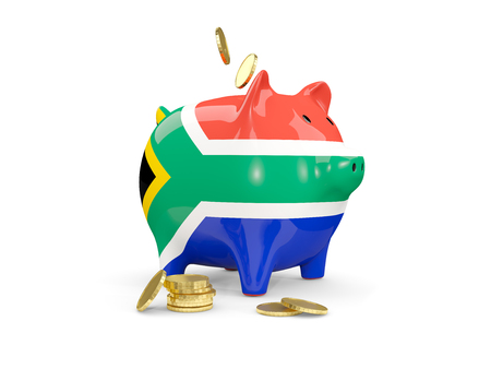 fag: Fat piggy bank with fag of south africa and money isolated on white. 3D illustration Stock Photo