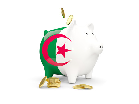 fag: Fat piggy bank with fag of algeria and money isolated on white. 3D illustration