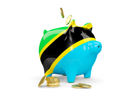 fag: Fat piggy bank with fag of tanzania and money isolated on white. 3D illustration Stock Photo