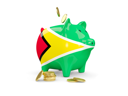 fag: Fat piggy bank with fag of guyana and money isolated on white. 3D illustration