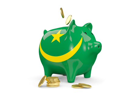 fag: Fat piggy bank with fag of mauritania and money isolated on white. 3D illustration