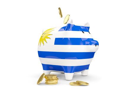 fag: Fat piggy bank with fag of uruguay and money isolated on white. 3D illustration Stock Photo