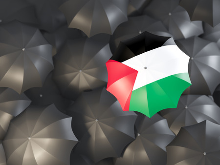 Umbrella with flag of palestinian territory on top of black umbrellas. 3D illustration