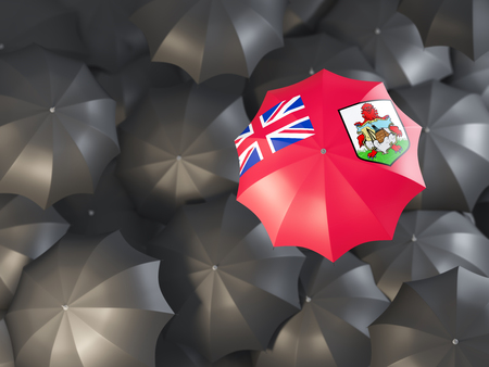 Umbrella with flag of bermuda on top of black umbrellas. 3D illustration