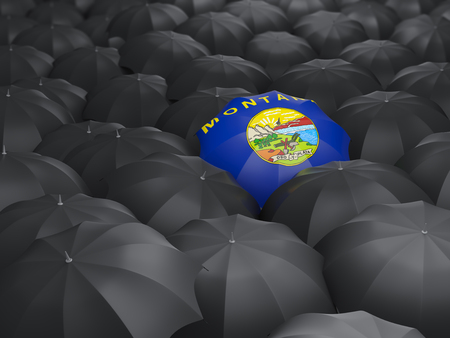 montana state flag on umbrella. United states local flags. 3D illustration