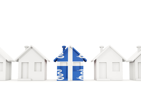 House with flag of martinique in a row of white houses. Real estate concept. 3D illustration Stock Photo