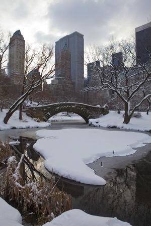Central Park, Nueva York. Hermoso parque en la hermosa ciudad.