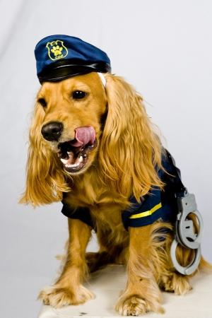 bloodhound: Whos next?