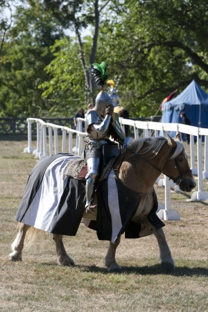 Medieval Knight  on Battlefield Stock Photo - 15546967