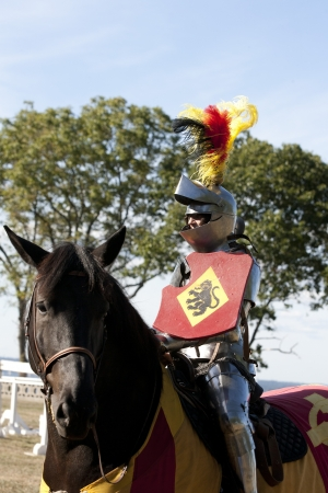 joust: Medieval Knight with helper