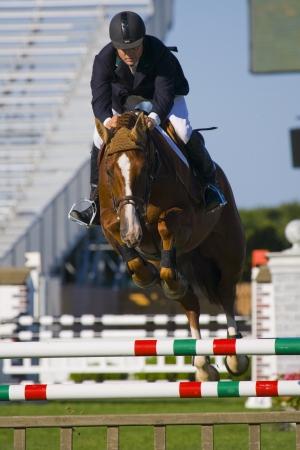 show jumping Reklamní fotografie - 15578066